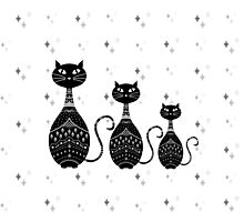 Black and White Cat Illustration  Photographic Print