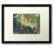 Fringe Dweller Framed Print