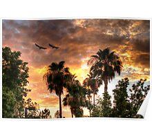 Balmy Desert Sunset Poster