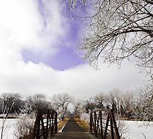 Frozen by Sharlene Rens