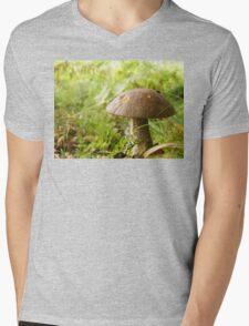 I'll meet you at the toadstool... Mens V-Neck T-Shirt