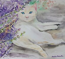 White cat by Monika Howarth