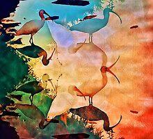 Shore Birds Orlando Florida by smoothstones