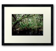 Parker Slough #5. Framed Print