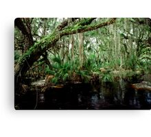Parker Slough #5. Canvas Print