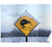 Kiwi with Skis Poster