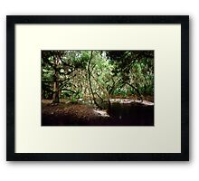 Parker Slough #6. Framed Print