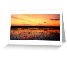 Sunset. East Lake Toho. Greeting Card