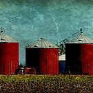 Red in a Row by Sheryl Gerhard