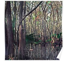 Bull Creek Swamp. Poster