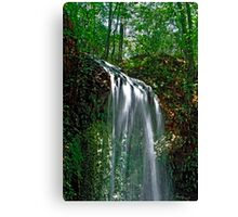 Falling Waters.  Canvas Print