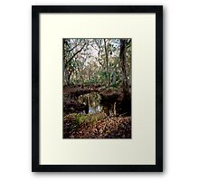 Parker Slough #8. Framed Print