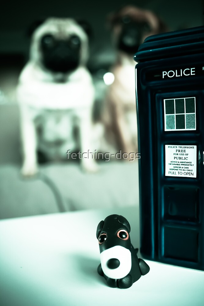 Polymer Pommie & The Tardis by fetching-dogs