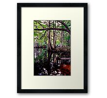 Shingle Creek #2. Framed Print