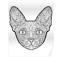 Sphynx Cat - Complicated Cats Poster