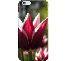 Tulips 7 iPhone Case/Skin