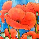 Poppies by Alexandra Felgate