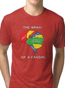 The Brain of a Fangirl Tri-blend T-Shirt