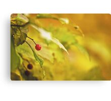 Red spot Canvas Print