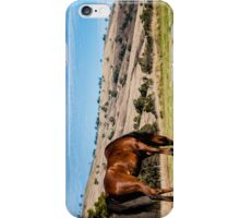 Horse with a view iPhone Case/Skin