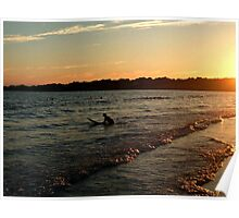 A Surfer At Sunset, Second Beach, Middletown, RI Poster