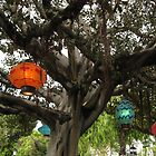 Lovely Lanterns by LunaticGnome