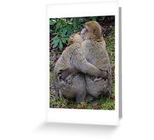 Give us a cuddle... Greeting Card