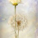 Dandelion Creation by Dianne English