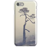A single tree iPhone Case/Skin