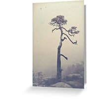 A single tree Greeting Card
