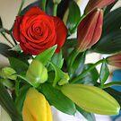 start of a flowers lives by xxnatbxx