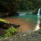 Solitude-Potaroo Falls by Rodney Trenchard