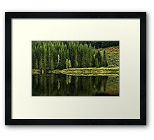Reflections on Nature Framed Print