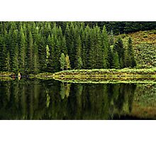 Reflections on Nature Photographic Print