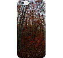 Beechwood sunset iPhone Case/Skin