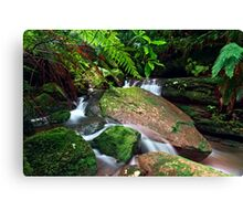 Christmas in the Forest Canvas Print
