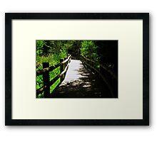 Nature Path © Framed Print