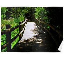 Nature Path © Poster
