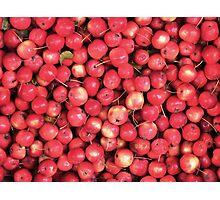 Lots of little... cherries? Photographic Print