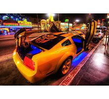Hollywood Bumblebee Photographic Print