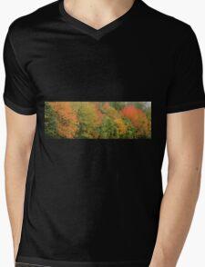 Autumn Colours Mens V-Neck T-Shirt