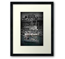 Wait and See Framed Print