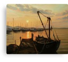 Sun Path Canvas Print