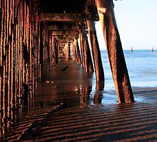 Under the Boardwalk in the late afternoon Sun by Sea-Change