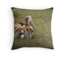 Beauty Rest ~ Throw Pillow