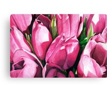 Pink Tulips in Coloured Pencil Canvas Print