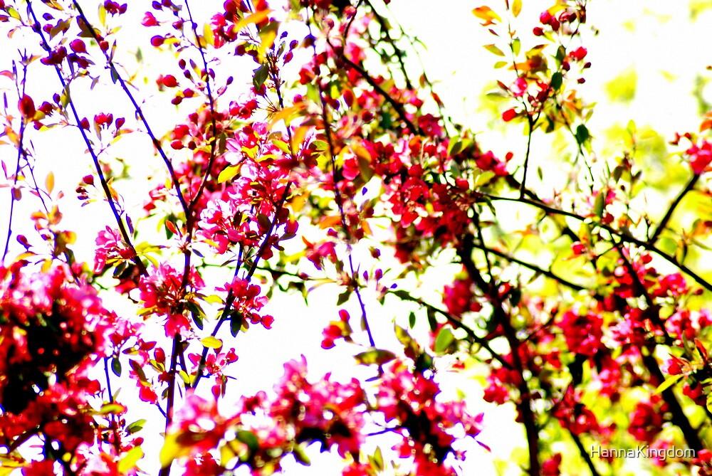 Oriental Cherry Blossom by HannaKingdom