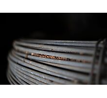 Fence Wire Photographic Print