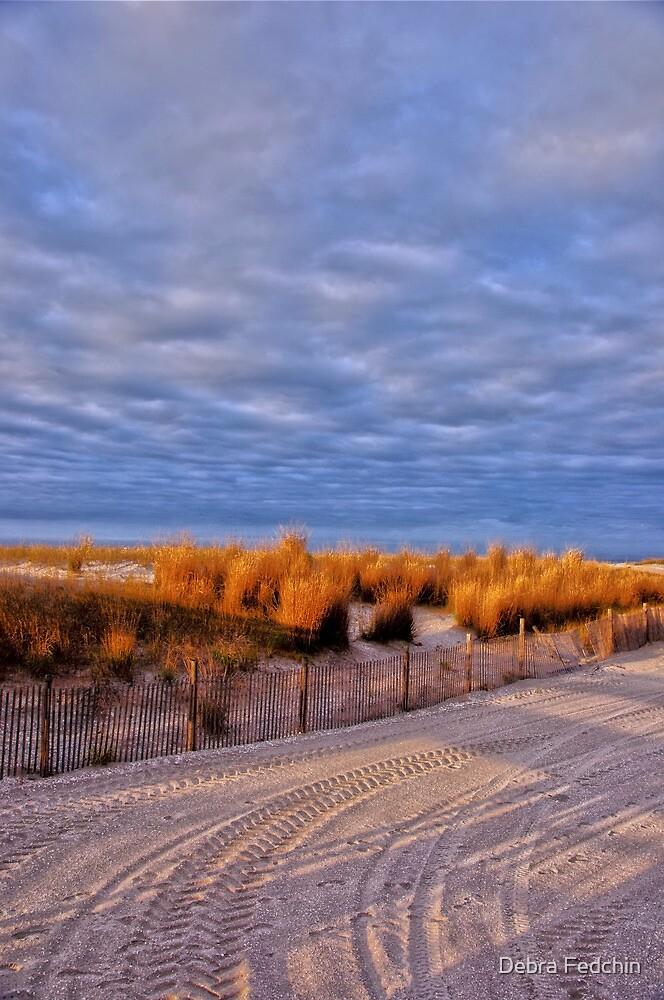 The Early Morning Light in Atlantic City by Debra Fedchin