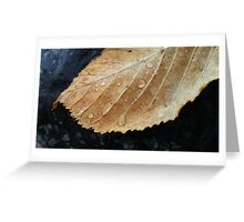 Gold leaf with raindrops Greeting Card